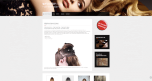 Website Hairextensions Lei